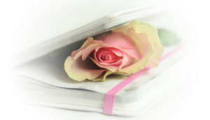 book rose